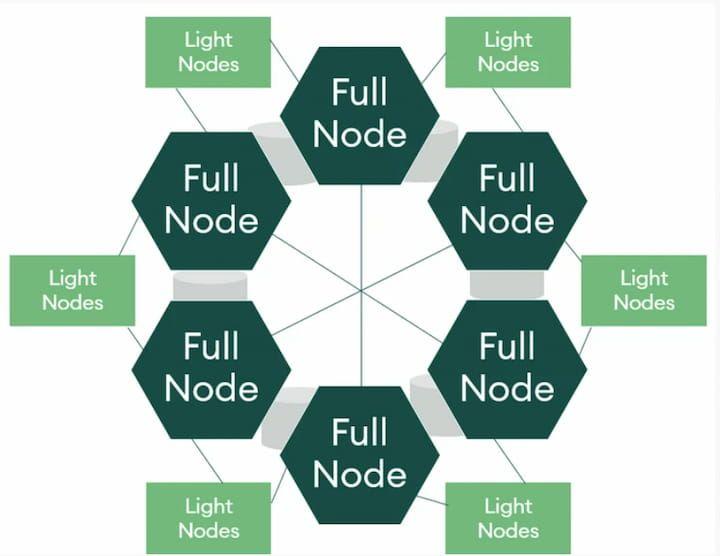 Full nodes vs. light nodes