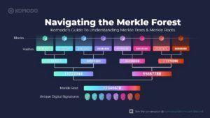 A Merkle Tree example.