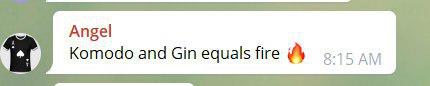 komodo dpow GIN masternodes